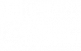 Logo Consejo Nacional de Personas con Discapacidad